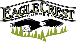 Eagle Crest Nursery Logo
