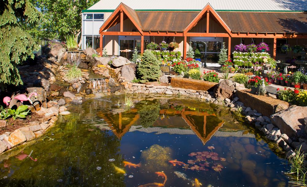 Pond in Eagle Crest Nursery