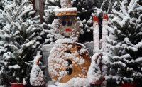 Snowy for Christmas at Eagle Crest Nursery