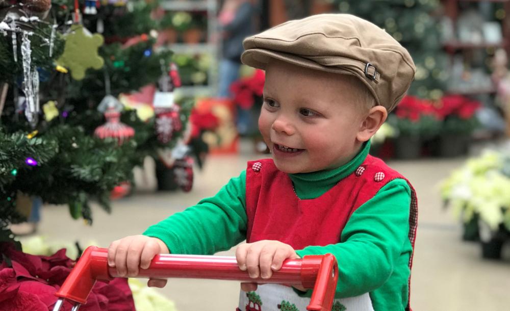 Teddy for Christmas at Eagle Crest Nursery